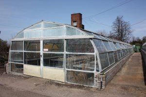 glasshouse4
